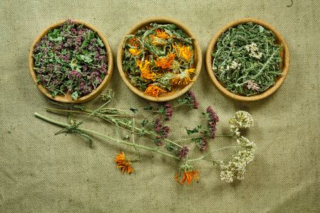 phytotherapy: Dried herbs for use in alternative medicine.Herbal medicine, phytotherapy medicinal herbs.For preparation of infusions, decoctions, tinctures, powders, ointments, tea.Background green cloth