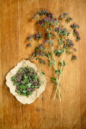 Oregano.Dried herbs for use in alternative medicine.Herbal medicine, phytotherapy medicinal herbs.For preparation of infusions, decoctions, tinctures, powders, ointments, tea.Background wooden board Stock Photo