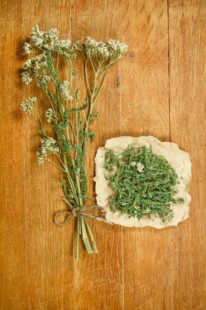 phytotherapy: Yarrow.Dried herbs for use in alternative medicine.Herbal medicine, phytotherapy medicinal herbs.For preparation of infusions, decoctions, tinctures, powders, ointments, tea.Background wooden board