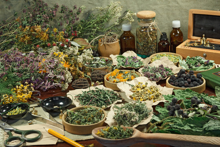 phytotherapy: Set healing herbs. Dried herbs for use in alternative medicine.Herbal medicine, phytotherapy medicinal herbs.For preparation of infusions, decoctions, tinctures, powders, ointments, tea. Stock Photo