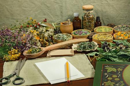 치유 식물을 설정합니다. 대체 의학에 사용하기 위해 말린 허브. 초본 화장품, phytotherapy 약초. 주입, 조제, 팅크, 분말, 연고, 차 준비.
