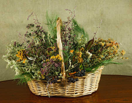 Basket with healing herbs. Dried plant for use in alternative medicine. Herbal medicine, phytotherapy medicinal herbs. For preparation of infusions, decoctions, tinctures, powders, ointments, tea.