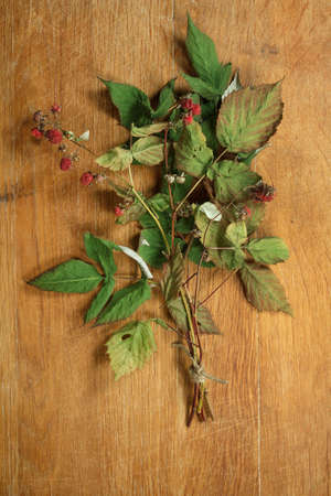 herbal cosmetics: Raspberry. Dried herbs for use in alternative medicine, spa, herbal cosmetics, herbal medicine, preparing infusions, decoctions, tinctures, powders, ointments, butter, tea, bath. Stock Photo