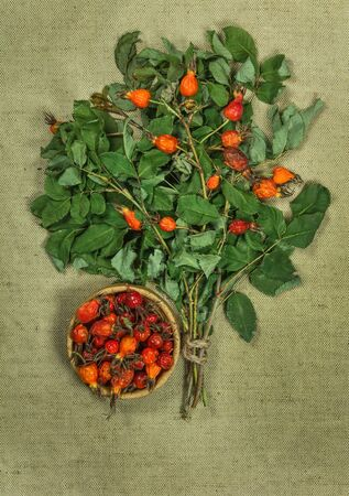 herbal cosmetics: Briar, brier, wild rose. Dried herbs for use in alternative medicine, spa, herbal cosmetics, herbal medicine, preparing infusions, decoctions, tinctures, powders, ointments, butter, tea, bath.