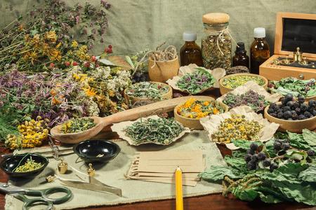 치유 허브의 집합입니다. 대체 의학, 스파, 약초 화장품, 약초, 약제, 달이기, 팅크, 파우더, 연고, 버터, 차, 목욕용으로 사용하기위한 말린 잔디.