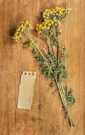 desiccated: Tansy. Dried herbs for use in alternative medicine, spa, herbal cosmetics, herbal medicine, preparing infusions, decoctions, tinctures, powders, ointments, butter, tea, bath.