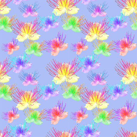 Capers. Texture of flowers. Seamless pattern for continuous replicate. Floral background, photo collage for production of textile, cotton fabric. For use in wallpaper, covers.