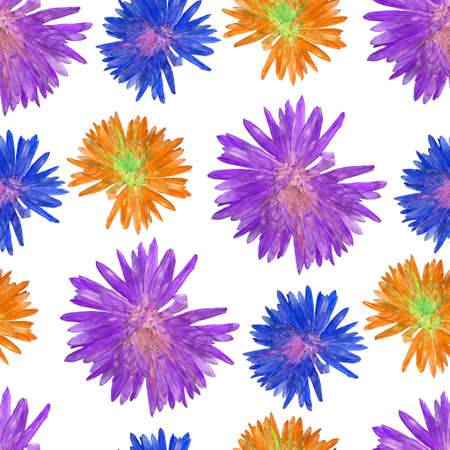 aster: Aster. Texture of flowers. Seamless pattern for continuous replicate. Floral background, photo collage for production of textile, cotton fabric. For use in wallpaper, covers