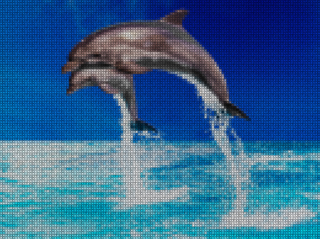 punto de cruz: Illustration. Cross-stitch. Jump of two dolphins in the sea.