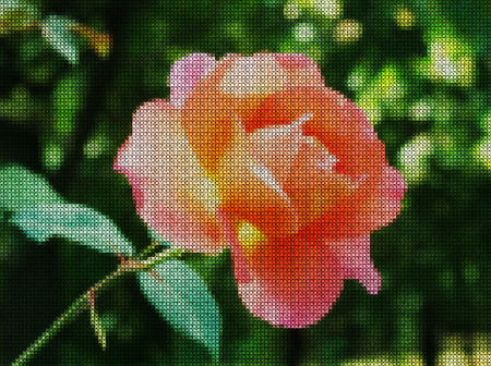 punto de cruz: Illustration. Cross-stitch. Red rose on a green background. Foto de archivo