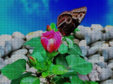 Illustrations. Cross-stitch. Butterfly on a flower among stones on a blue background. Stock Photo