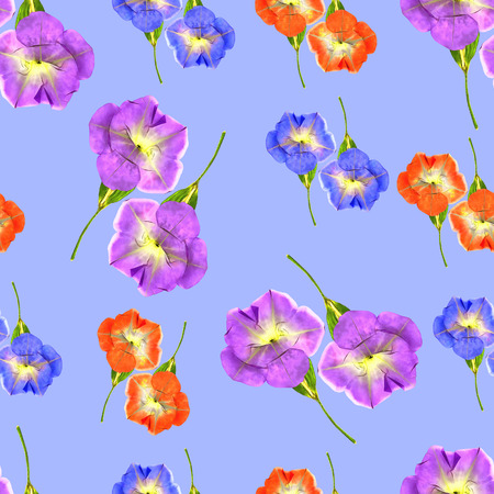 Petunia flowers Seamless pattern for continuous replicate. Stock Photo
