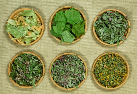 Set of healing herbs. Dry herbs for use in alternative medicine, phytotherapy, spa, herbal cosmetics. Preparing infusions, decoctions, tinctures. Used in powders, ointments, butter, tea, bath Reklamní fotografie
