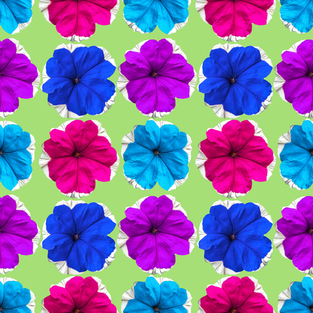 Petunia. Texture of flowers. Seamless pattern for continuous replicate. Floral background, photo collage for production of textile, cotton fabric. For use in wallpaper, covers Stock Photo