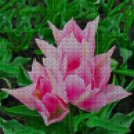 Illustrations. Cross-stitch. Bright scarlet tulip flower on a green background of sheets.