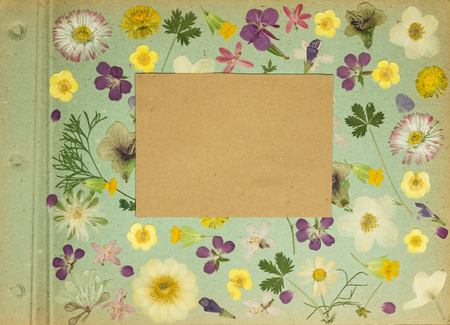 Page from an old photo album green color. Scrapbooking element decorated with leaves, flowers and petals wild flowers. Rustic, country style album page in scrapbook with frames for photo. Reklamní fotografie - 119337437