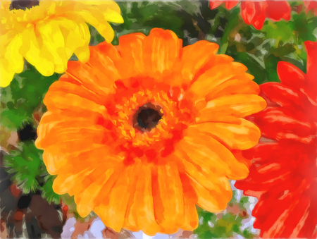 Bouquet of gerberas. Bright orange, red and yellow flowers close-up. Drawing watercolor. Digital painting-illustration. Gerberas flower. Zdjęcie Seryjne