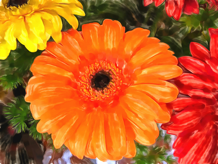 Bouquet of gerberas. Bright orange, red and yellow flowers close-up. Drawing watercolor. Digital painting-illustration. Gerberas flower. Stock Photo