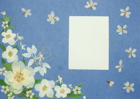 Page from an old photo album blue color. Scrapbooking element decorated with leaves, flowers and petals wild flowers. Rustic, country style album page in scrapbook with frames for photo.