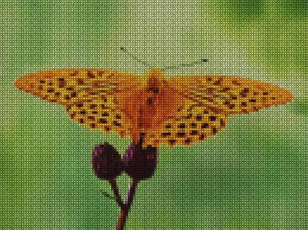 Illustration. Cross stitch. Butterflies and wild flowers on a green background. Scrapbook. Reklamní fotografie