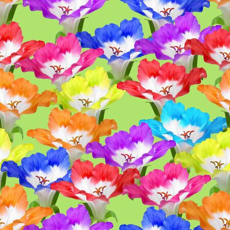 Geranium, pelargonium. Texture of flowers. Seamless pattern for continuous replicate. Floral background, photo collage for production of textile, cotton fabric. For use in wallpaper, covers Reklamní fotografie