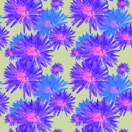 Aster, Michaelmas daisy. Texture of flowers. Seamless pattern for continuous replicate. Floral background, photo collage for production of textile, cotton fabric. For use in wallpaper, covers Zdjęcie Seryjne