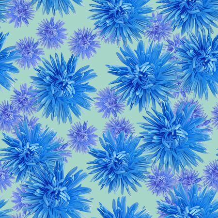 Aster. Illustration, texture of flowers. Seamless pattern for continuous replicate. Floral background, photo collage for production of textile, cotton fabric. For use in wallpaper, covers
