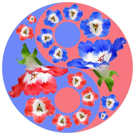 Floral Yin Yang symbol. Geranium. Geometric Yin Yang symbol drawing made by plants on colored background in oriental style. Yin Yang symbol from flowers, petals and leaves. Geometric mandala picture