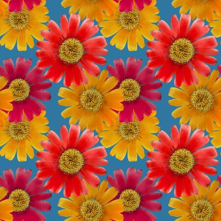 Marigold, calendula illustration, texture of flowers. Seamless pattern for continuous replicate. Floral background, photo collage for production of textile, cotton fabric. For use in wallpaper, covers