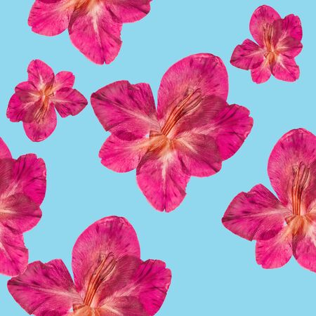 Gladiolus. Illustration, texture of flowers. Seamless pattern for continuous replicate. Floral background, photo collage for production of textile, cotton fabric. For use in wallpaper, covers Stock fotó