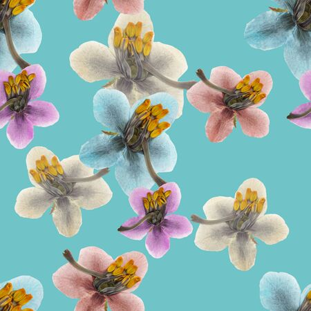 Pyrola. Illustration, texture of flowers. Seamless pattern for continuous replicate. Floral background, photo collage for production of textile, cotton fabric. For use in wallpaper, covers