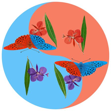 Floral symbol Yin-Yang. Gladiolus, butterfly. Geometric pattern of Yin-Yang symbol, from plants on colored background in Oriental style. Yin Yang symbol from flowers. Flower illustration of mandala Stock fotó