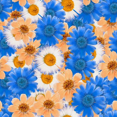 Cosmos, calendula, daisy. Illustration, texture of flowers. Seamless pattern for continuous replicate. Floral background, photo collage for production of textile, cotton fabric. For wallpaper, covers