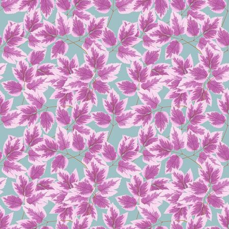 Maple leaf. Illustration, texture of flowers. Seamless pattern for continuous replicate. Floral background, photo collage for production of textile, cotton fabric. For use in wallpaper, covers 스톡 콘텐츠