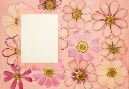 Page from an old photo album pink color. Scrapbooking element decorated with leaves, flowers and petals wild flowers. Rustic, country style album page in scrapbook with frames for photo. 스톡 콘텐츠