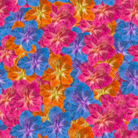 Gladiolus. Illustration, texture of flowers. Seamless pattern for continuous replicate. Floral background, photo collage for production of textile, cotton fabric. For use in wallpaper, covers 스톡 콘텐츠