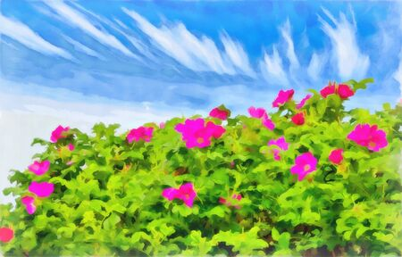 Watercolor floral pattern. Digital painting-illustration.  Bush the wild rose. Bright red flowers on green leaves background. Blue sky. Natural watercolor landscape. 스톡 콘텐츠