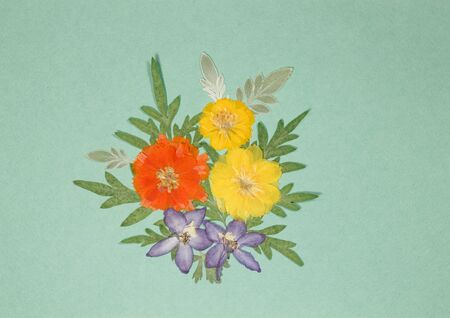 Bouquet of dry flowers on a colored background. For use in floristry, scrapbooking. Country and eco style. Element for scrapbooking. Ornament, bouquet, boutonniere of the dry pressed flowers.