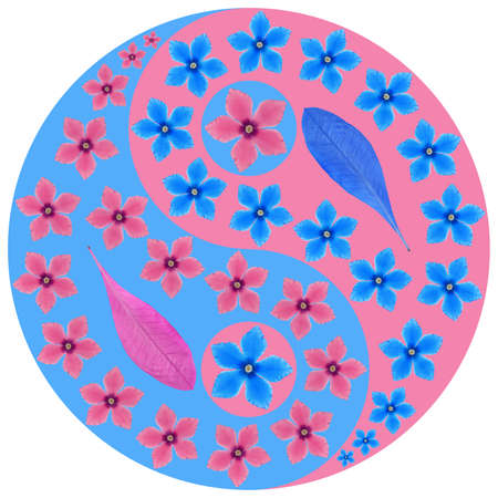 Floral symbol Yin-Yang. Cyclamen. Geometric pattern of Yin-Yang symbol, from plants on colored background in Oriental style. Yin Yang symbol from flowers, petals. Flower illustration of mandala. Reklamní fotografie