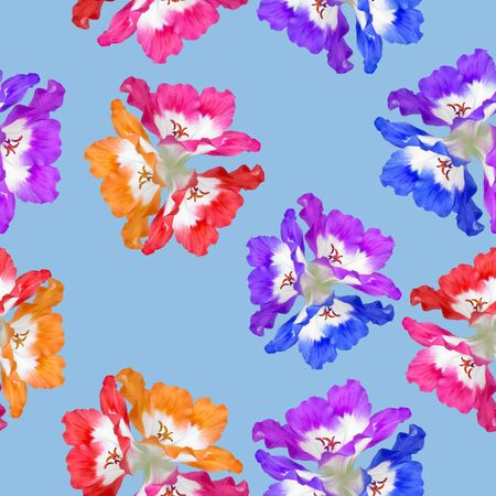 Geranium, pelargonium. Illustration, texture of flowers. Seamless pattern for continuous replication. Floral background, photo collage for textile, cotton fabric. For use in wallpaper, covers