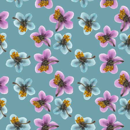 Pyrola. Illustration, texture of flowers. Seamless pattern for continuous replication. Floral background, photo collage for textile, cotton fabric. For use in wallpaper, covers Reklamní fotografie