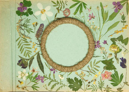 Scrap booking element decorated with leaves, flowers and petals flowers. Reklamní fotografie