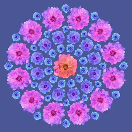 Mandala from dried pressed flowers, petals.