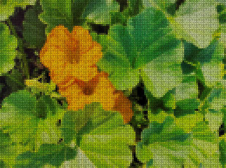 Illustrations. Cross-stitch. Bright pumpkin flowers on green background from leaves.