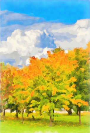 Watercolor drawing. Autumn maple grove. Digital painting - illustration.