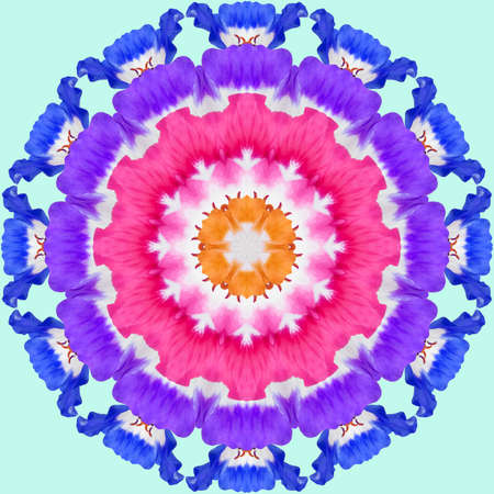 Mandala from dried pressed flowers, petals. Pelargonium. Mandala is symbol of buddhism, hinduism, yoga. Ornament mandala with pattern floral elements in oriental style for relax and meditation.
