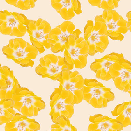 Rose flower. Illustration, texture of flowers. Seamless pattern for continuous replication. Floral background, photo collage for textile, cotton fabric. For use in wallpaper, covers 版權商用圖片 - 159596841