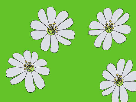 Coloring page with stylizeds cosmos flowers floral pattern. Cartoon style. Clipart for poster, t shirt print, apparel. For greeting card, label, patch or sticker. Illustration. Mosaic, inlay or stained glass.