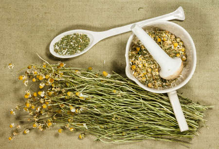 Chamomile. Dry herbs for use in alternative medicine, phytotherapy, spa or herbal cosmetics. Preparing infusions, decoctions or tinctures. For powders, ointments, oil or tea, bath. 스톡 콘텐츠