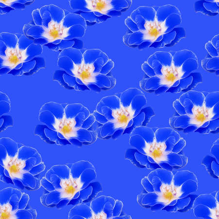 Rose flower. Illustration, texture of flowers. Seamless pattern for continuous replication. Floral background, photo collage for textile, cotton fabric. For wallpaper, covers, print.